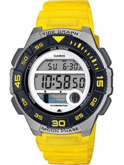 Casio Collection Gelb