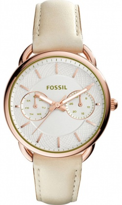 Fossil Tailor Beige